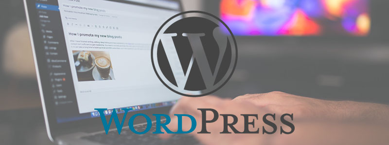 curso de wordpress en mexico
